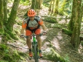 Mountainbikeroute Gedinne
