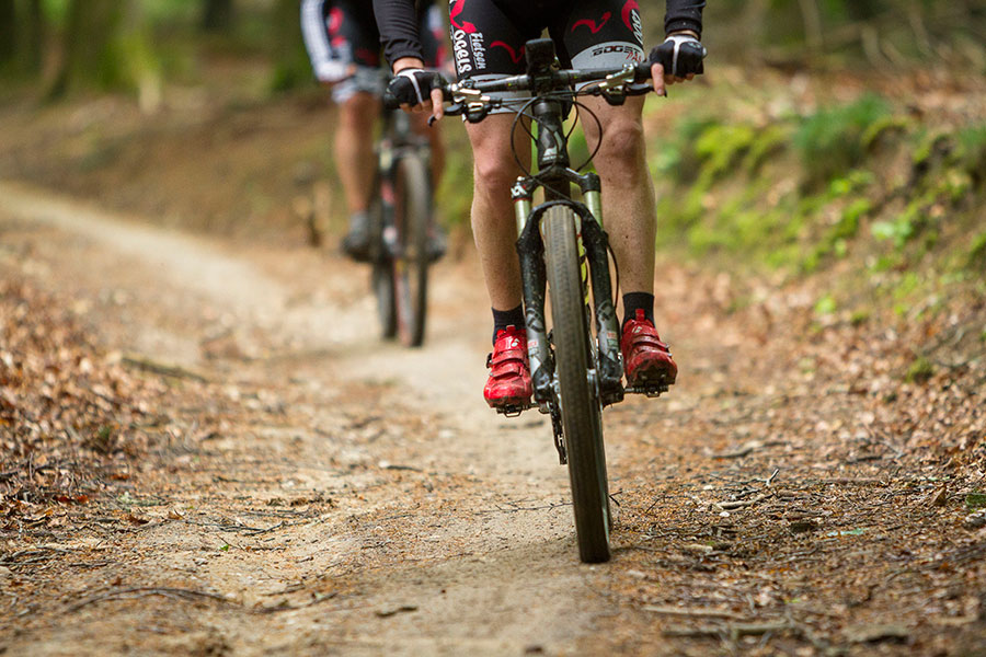 Nieuwe mountainbikelus in Nationaal Park De Loonse en Drunense Duinen