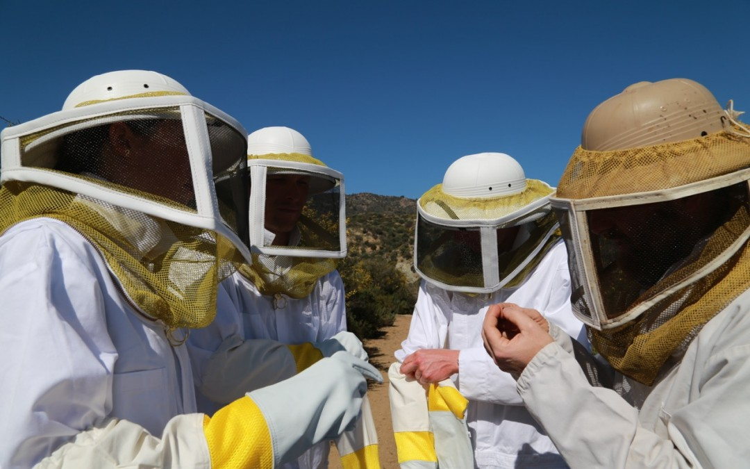 Cyprus Sunshine Cup – Post-race activity: honing en ecotoerisme