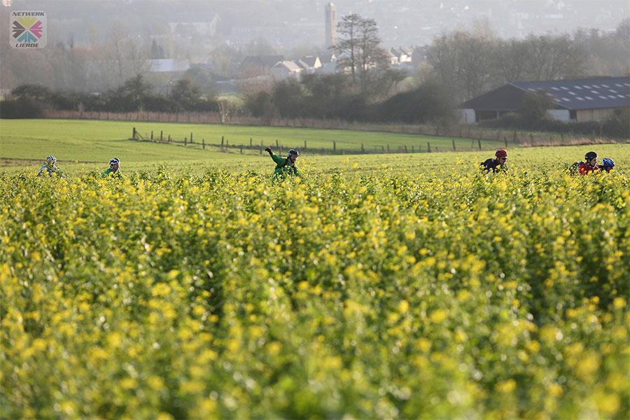 Verken de Vlaamse Ardennen: 7e Cameleonride op zondag 5 november 2017