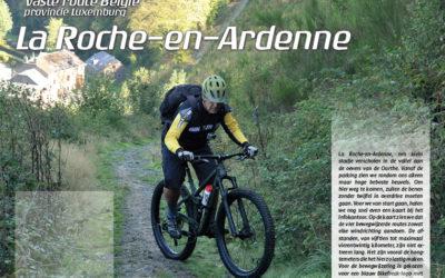 Vaste route La Roche-en-Ardenne
