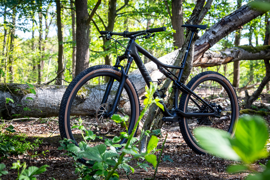 Specialized Fast Trak transparant